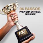 06-passos-para-uma-entrega-eficiente-fox-express-750x750